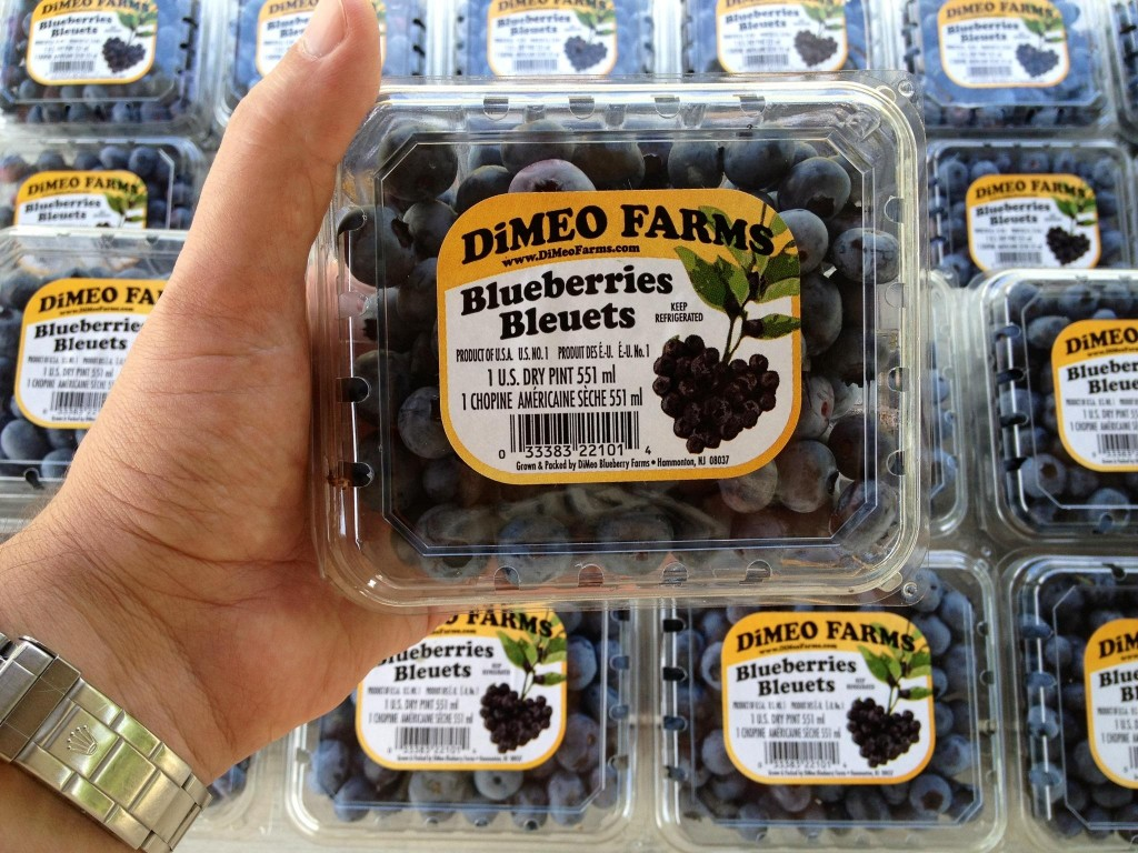 The best tasting blueberries in the world